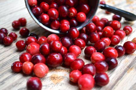 真っ赤なクランベリー果実